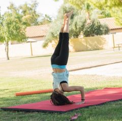adult gymnastics at home  innate moves