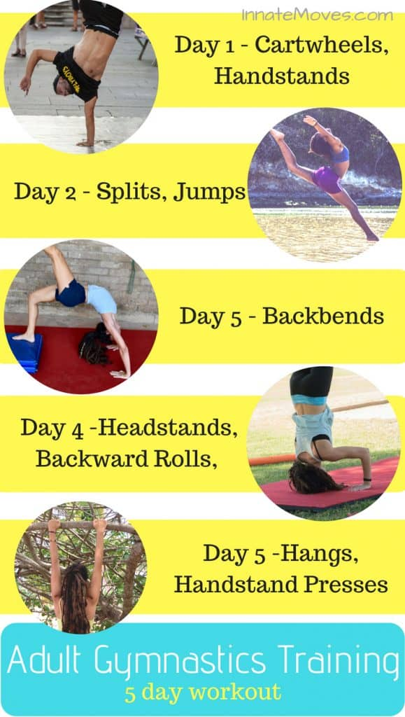 Adult Gymnastics Workout, Gymnastics Training, Gymnastics at Home for Beginners, DIY Gymnastics